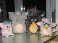 A group of different furbys