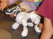 AIBO playing with kids