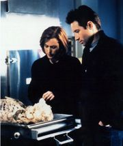 David Duchovny and Gillian Anderson as Mulder and Scully on The X-Files